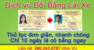 Changing Driver's License for Cars and Motorbikes to PET Plastic Card (according to new law) 5