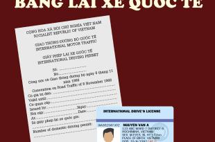 Đổi Bằng Lái Xe Quốc Tế 196 Nước Cho Người Việt Nam Đi Nước Ngoài (du lịch, du học) 5