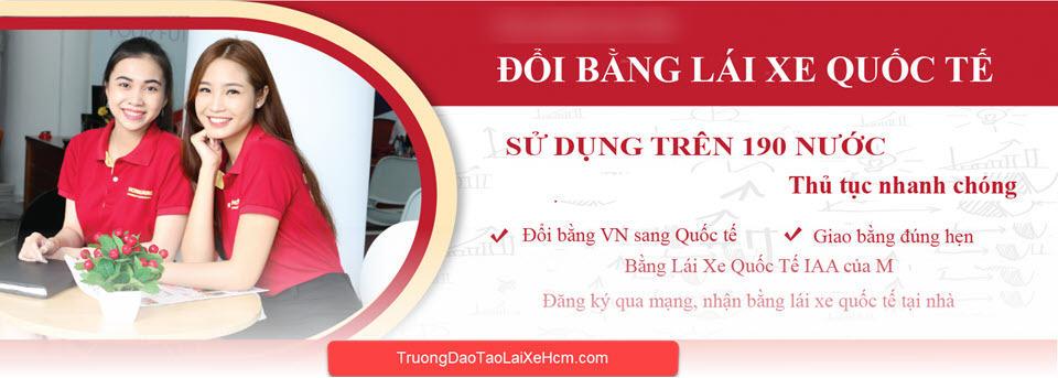 Dịch Vụ Đổi Bằng Lái Xe Quốc Tế Cho Người Việt Nam