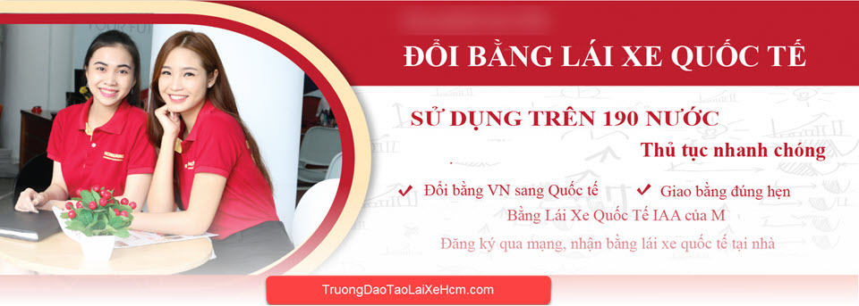 International Driver's License Change Service for Vietnamese