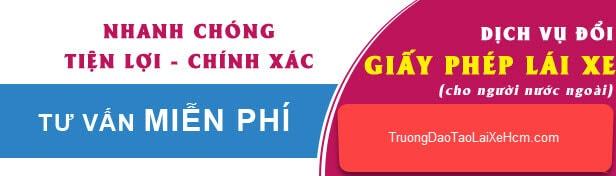 Đổi Bằng Lái Xe Cho Người Nước Ngoài Ở Việt Nam 5