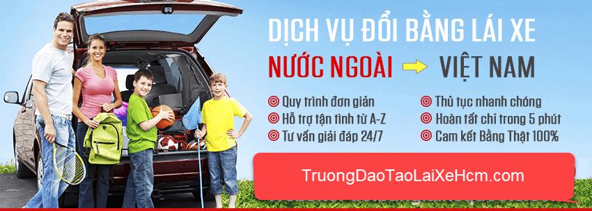 Đổi Bằng Lái Xe Cho Người Nước Ngoài Ở Việt Nam 4