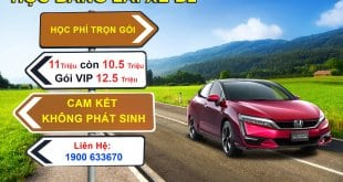 Training & Monitoring School: Studying - Taking a Driver's License B1, B11, B2 in Ho Chi Minh City 3