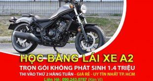 Training: Studying & Examining the A2 Motorbike License (large displacement motorbike> 175cc) 2