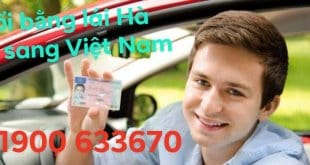 Quick Change of Dutch Driver License to Vietnam 5