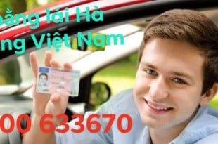doi bang lai xe ha lan sang vietn nam 310x205 - Dịch Vụ Đổi Bằng Lái Xe Hà Lan Sang Việt Nam Nhanh Chóng