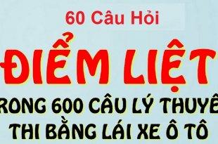 60 Câu Hỏi Điểm Liệt Thi Lý Thuyết Bằng Lái Xe [Đầy Đủ Đáp Án] 3